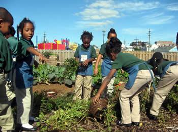 Edible Schoolyard New Orleans (ESYNOLA) | Newfish